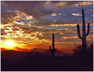 Nature - AZ sunset