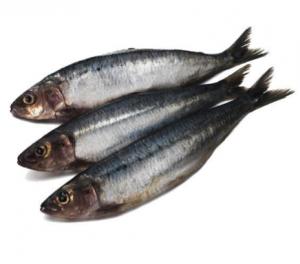 food-sardines