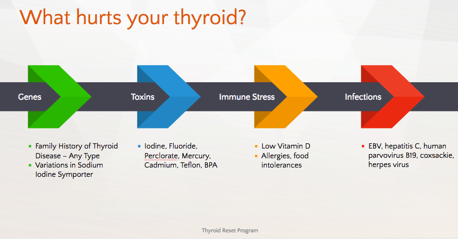 what-hurts-your-thyroid-graphic