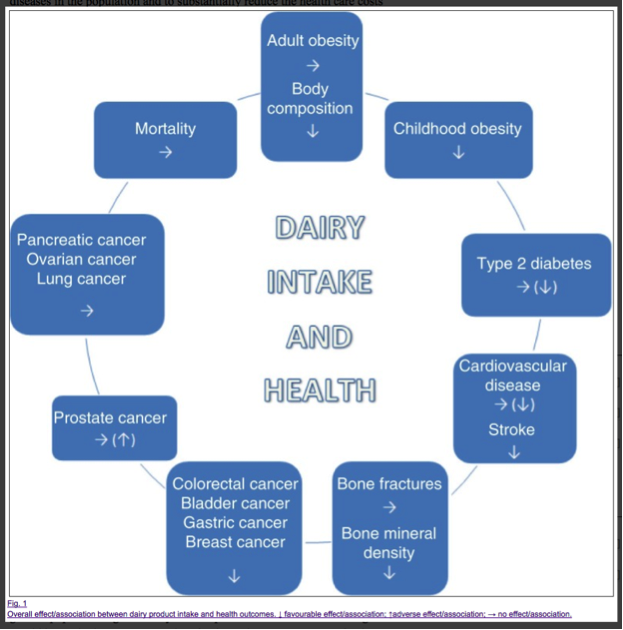 drc-dairy-intake-and-health-graphic