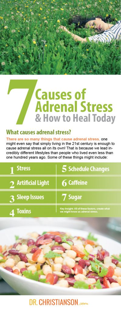 infographic_7causesofstress