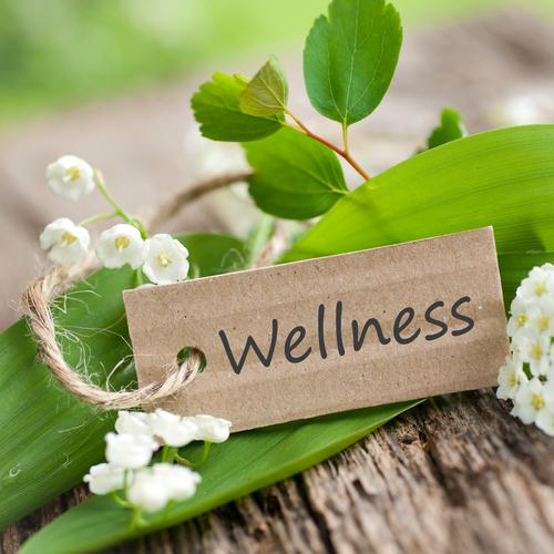Certified Wellness Practitioner - National Wellness Institute