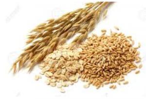 food-oats