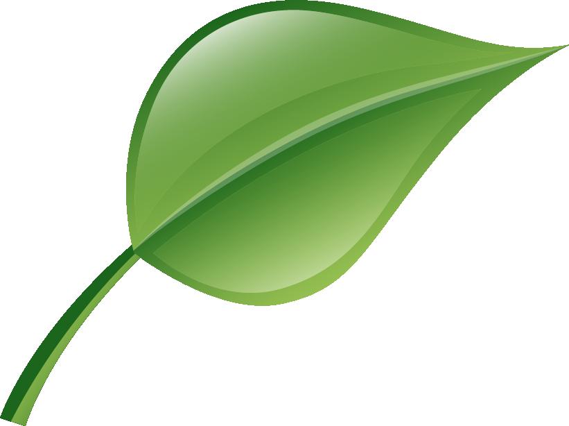 leaf-icon